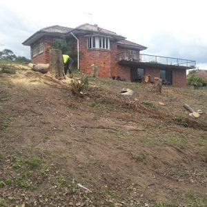 Subdivision Project on Steep Block